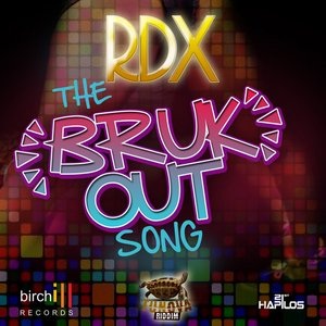Image for 'The Bruk Out Song - Single'