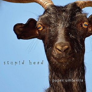 Image for 'Stupid Head'