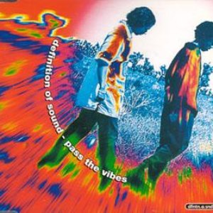 Image for 'Pass The Vibes'