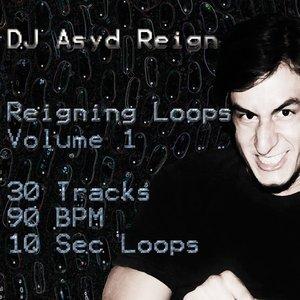 Bild för 'Reigning Loops, Vol. 1'