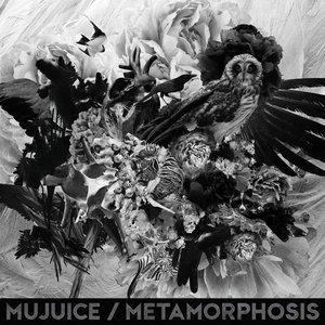 Immagine per 'Metamorphosis'