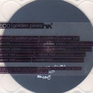 Immagine per 'Golden Pines (Such Broken Glass Remix)'
