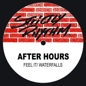 Image for 'Waterfalls / Feel It'