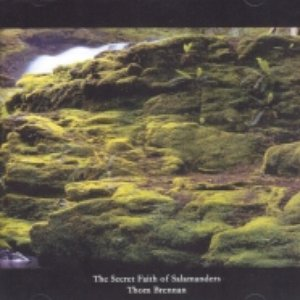 Image for 'The Moss Cathedral'