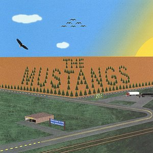 Image pour 'The MUSTANGS'