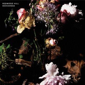 Image for 'Descender'