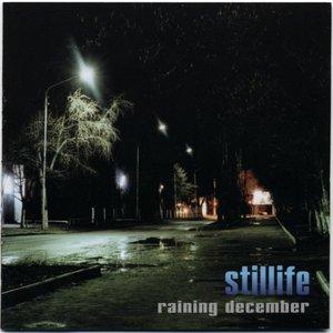 Image for 'Raining December'