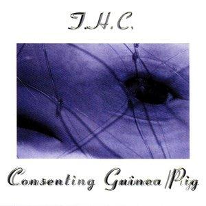 Imagem de 'Consenting Guinea Pig'