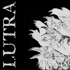 Image for 'Lutra'