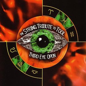 Image for 'The String Tribute To Tool - Third Eye Open'