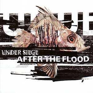 Immagine per 'After the Flood'