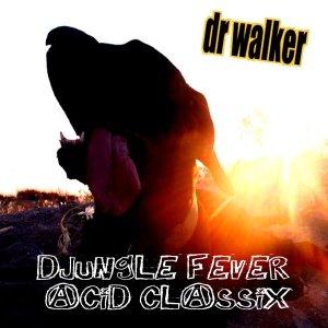 Image for 'djungle fever acid classix'