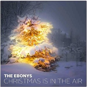 Image for 'Christmas Is in the Air'