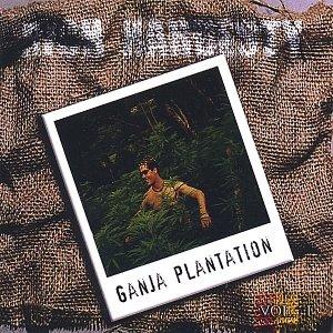 Image for 'Ganja Plantation'