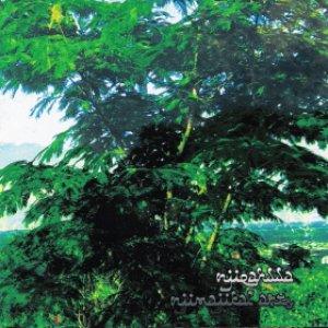Imagen de 'Njimajikal Arts'