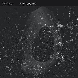 Immagine per 'Interruptions'