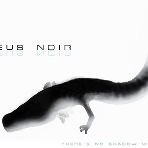 Image for 'Proteus Noir'