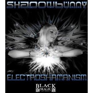Image for 'Shadowbunny- Electroshamanism'