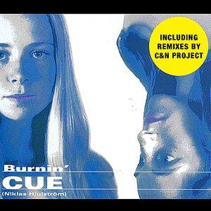 Image for 'Burnin' - Remixes'