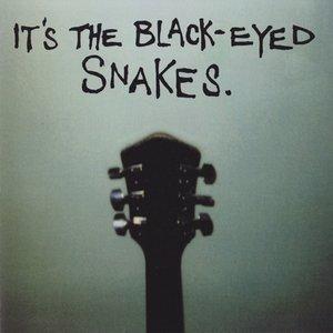 Bild für 'It's The Black Eyed Snakes'