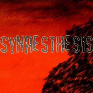 Image for 'Synaesthesis'