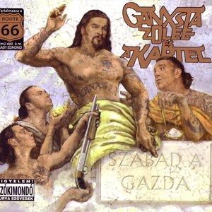 Image for 'Szabad A Gazda'