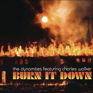 Image for 'Burn It Down'