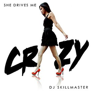Image for 'She Drives Me Crazy'