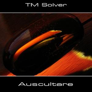 TM Solver - Namaste