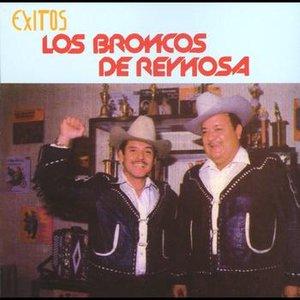 Bild för 'Los Broncos de Reynosa'