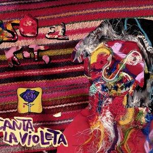 Image for 'OSo canta la violeta'