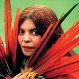 Image for 'Marlui Miranda'