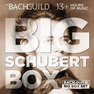 Image for 'Big Schubert Box'