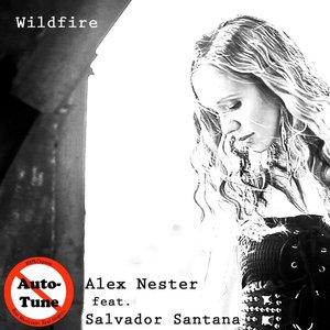 Bild für 'Wildfire (feat. Salvador Santana)'