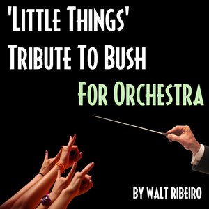 Image for 'Bush 'Little Things' For Orchestra'