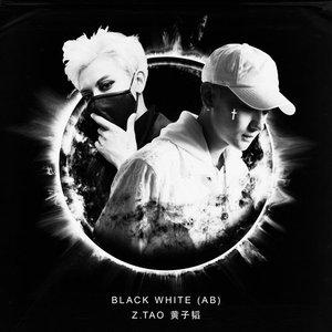 Image for 'Black White (AB)'
