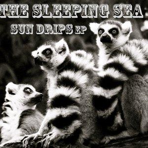 Imagen de 'Sun Drips EP'