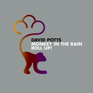 Image for 'Monkey in the Rain'