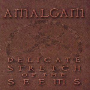 Image for 'Delicate Stretch of the Seems'