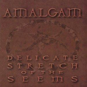 Bild für 'Delicate Stretch of the Seems'