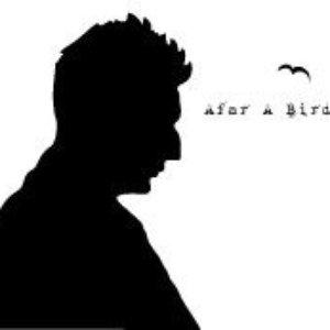 Bild für 'afar a bird'