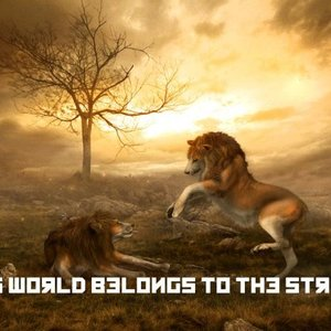 Image for 'This World Belongs To The Strong'