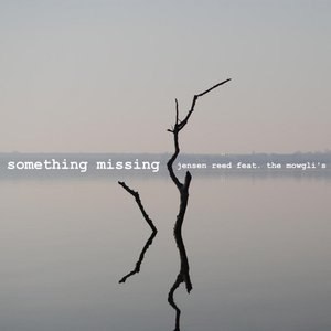 Image for 'Something Missing (feat. The Mowgli's)'