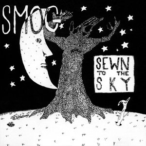 Image pour 'Sewn to the Sky'