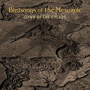 Image for 'Dawn Of The Cycads'