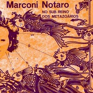 Image for 'No Sub Reino Dos Metazoários'