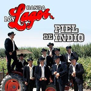 Image for 'Piel De Indio'