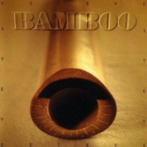 Image for 'Bamboo'