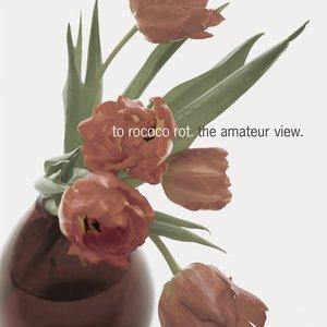 Imagem de 'The Amateur View (Deluxe Edition)'