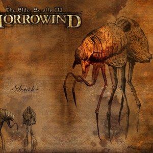 Bild för 'Morrowind soundtrack'